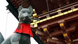 Relaxed Soothing Music. Traditional Japanese music. Photo: Fushimi Inari Shrine.