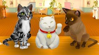 ПОБЕГ КОТЕНКА #1 детская игра про котика как раннер Том за золотом. Убегаем от собаки #пурумчата