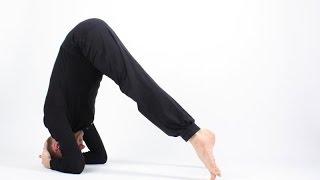 Видео уроки Открытой йоги. Ардха-сиршасана. Полукоролевская поза.