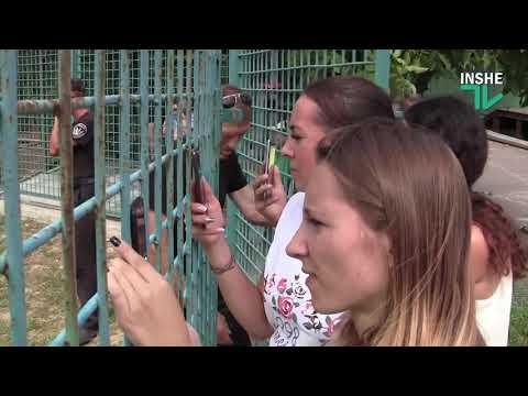 Жираф из Чехии приехал в Николаевский зоопарк