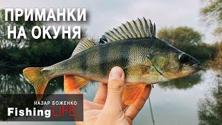 ЯК НАЛОВИТИ ОКУНЯ пізньою ОСІННЮ? І ДЕ шукати рибу?