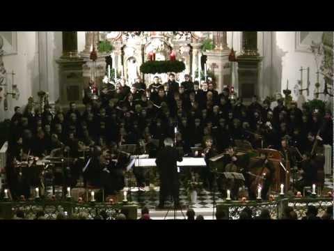 Herrscher des Himmels (Weihnachtsoratorium-Bach 2011), Johannes Stecher, Academia Jacobus Stainer
