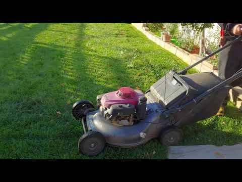 Using my sthil fs94r and Honda commercial mower