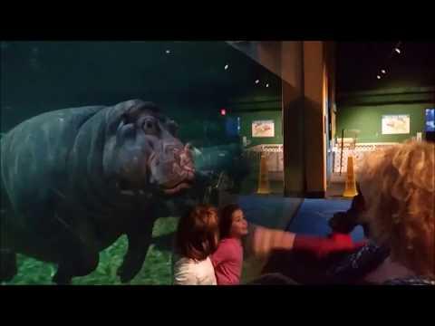 Adventure Aquarium, Camden, NJ