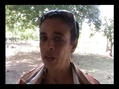 Proveedores, clientes y trabajadores de Agrotur en Camagüey