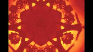 Boards of Canada - The Devil is in the Details