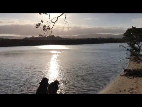 Sydney camping/fishing/surfing spots