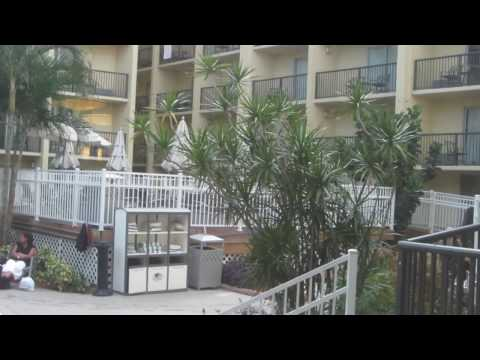 HAPPY NEW YEAR! Full Hotel Tour: DoubleTree by Hilton Tampa, FL