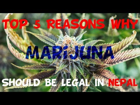 Top 5 Reason Why Marijuana Should Be Legal In Nepal
