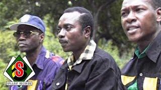 Africando - Gombo Salsa (feat. Nicolas Menheim) [Clip officiel]