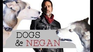 Our Dogs Meet Negan