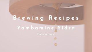 Yambamine Sidra (Ecuador) video