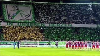 Popular VfL Wolfsburg & Junior Malanda videos