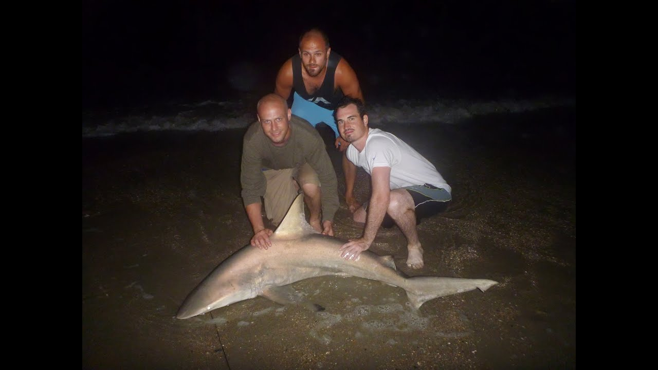 2013 shark fishing in ocean isle beach nc youtube for Lake pontchartrain fish species