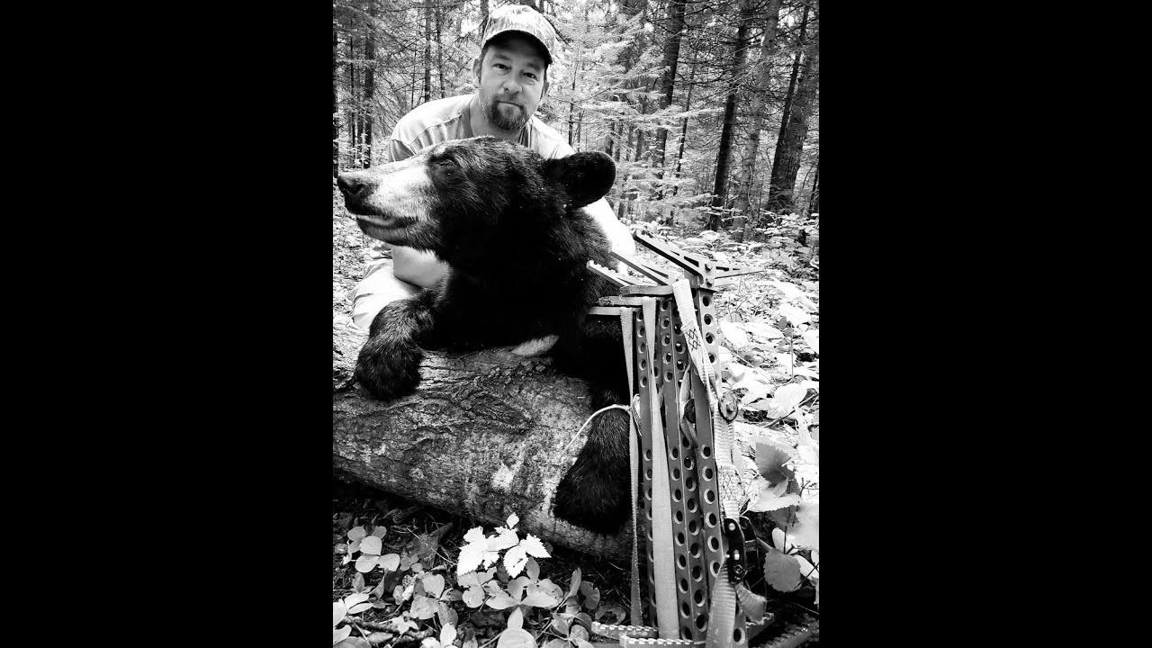 """Bear or bust #3  """"Killin time"""""""