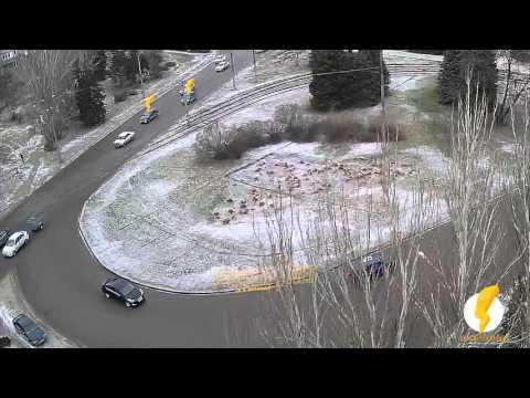 ДТП (авария) ул. Карбышева ул. Энгельса 30-12-2015 12-50