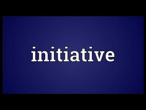 Initiative Meaning