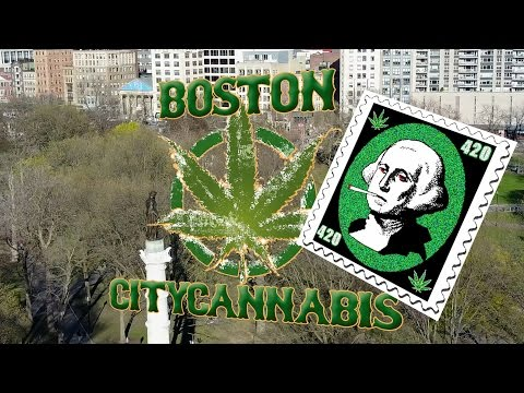 Boston Common 4:20:2017