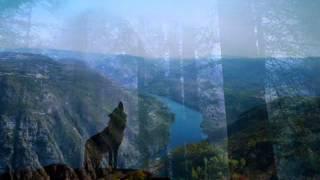 Sacred Harp Singers - Idumea (with lyrics)