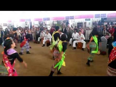 Danza en mistura