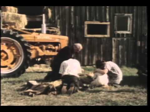 The Displaced Person Trailer 1976