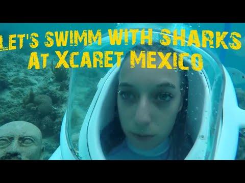 Mexico Playa Maroma part 2  Xcaret