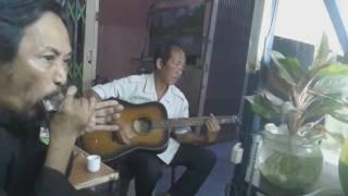MƯA TRÊN BIỂN VẮNG harmonica + guitar