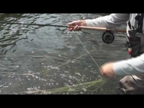 Spey Casting How To: Line Management