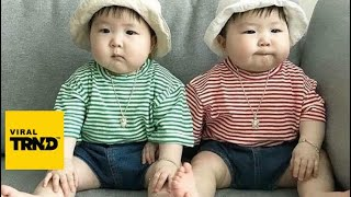 The FUNNIEST and CUTEST video you'll see today! - TWIN BABIES Adorable Moments Viral TRND Videos