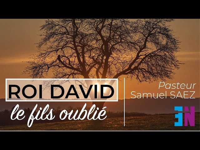ROI DAVID, le fils oublié