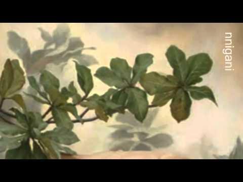 Haris Alexiou-To Tango Tis Nefelis / Tango to Evora/