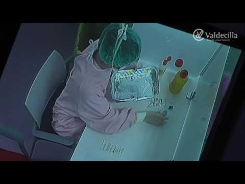 Técnicos de Farmacia del SCS profundizan en la Farmacia Hospitalaria