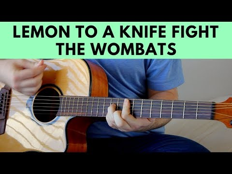Lemon To A Knife Fight - The Wombats Acoustic Guitar Cover