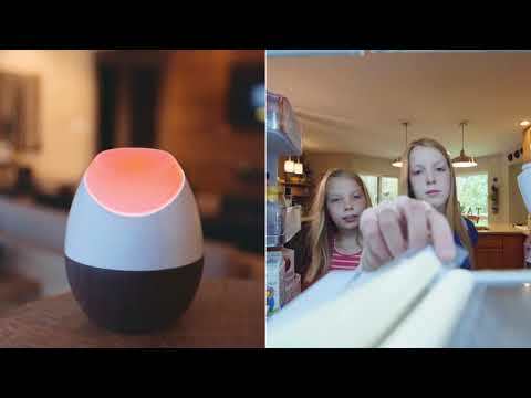 Glow: The smart energy tracker for your home that Lower your electric bills