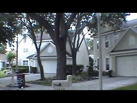 """Tampa Homes For Rent"" 3BR/2.5BA by ""Property Management Tampa Florida"""