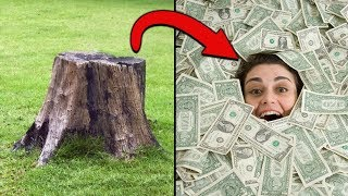 r/Treelaw Neighbor Cuts Down Tree, Pays $750,000!