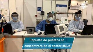 El proyecto de egresos propone aumentar la plantilla de trabajadores; la mayor ampliación del personal será en las áreas de salud y seguridad