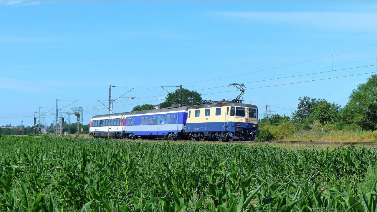 Re421 387 mit einem Sonderzug (DPE 31396 Basel - Neustrelitz Hbf) bei Waghäusel