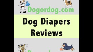 #1 Dog Diaper to Potty train Your Dog - Manage Dog Incontinence with Doggie Diaper