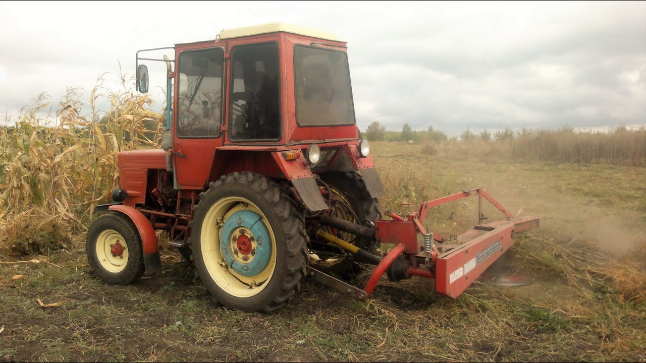 Сено и трава купить недорого в интернет-магазине товаров для грызунов unizoo с доставкой по москве, подмосковью и регионам россии.