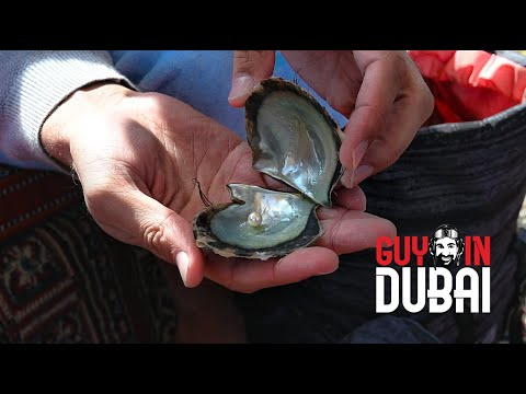 Pearl Diving in UAE - The cold truth
