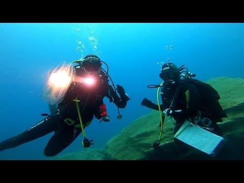 Proteggere la biodiversità marina per proteggere noi stessi