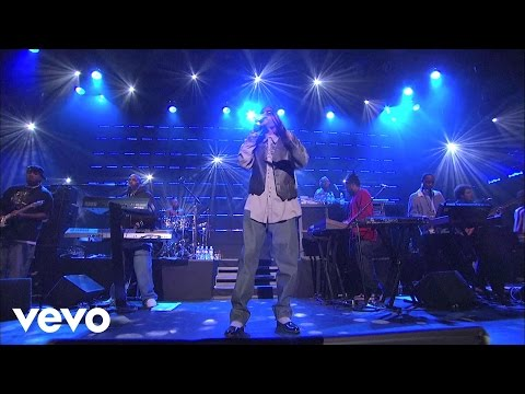 Snoop Dogg - The Next Episode (Live at the Avalon)