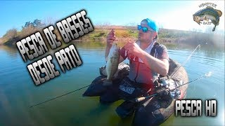 PESCA DE BASSES DESDE PATO // BASS FISHING FROM DUCK OR FLOAT TUBE