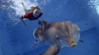 Dolphin Tale 2 - TV Spot 1 [HD]