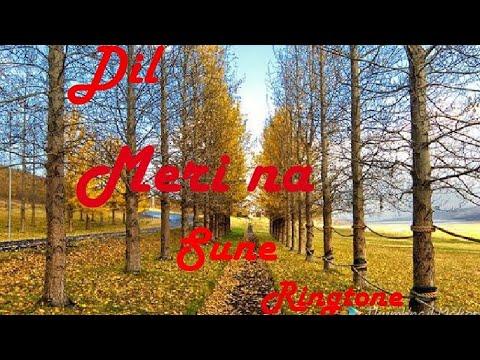 dil meri na sune instrumental ringtone download