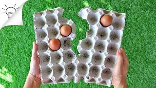 8 Creative Ideas With Egg Carton | Thaitrick
