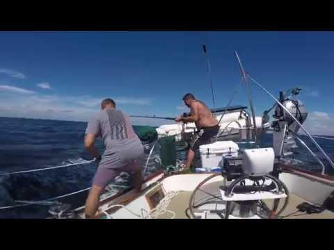 Sailing Oceanghost Episode 5