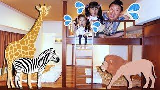 Floor is 動物園!?いろんなものが出てきちゃった~>< himawari-CH