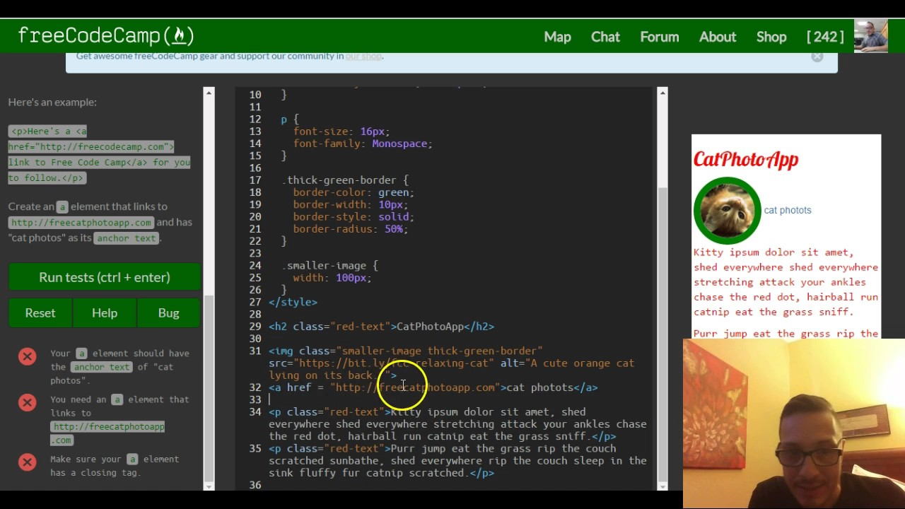 Link to External Pages with Anchor Elements, freeCodeCamp review html &  css, lesson 21